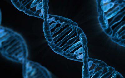 Is kPNI (klinische psycho-neuroimmunologie) te wetenschappelijk en te evidence-based?